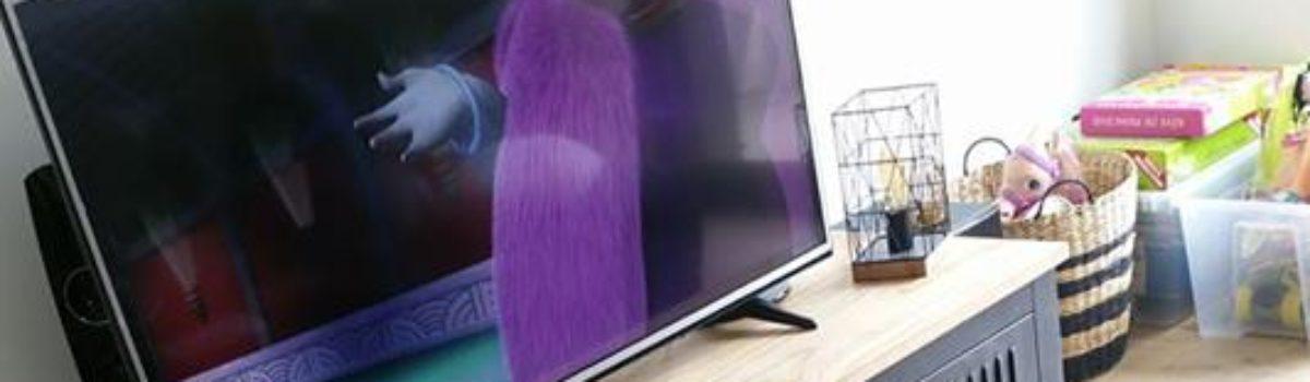 Meuble TV vestiaire 1 porte